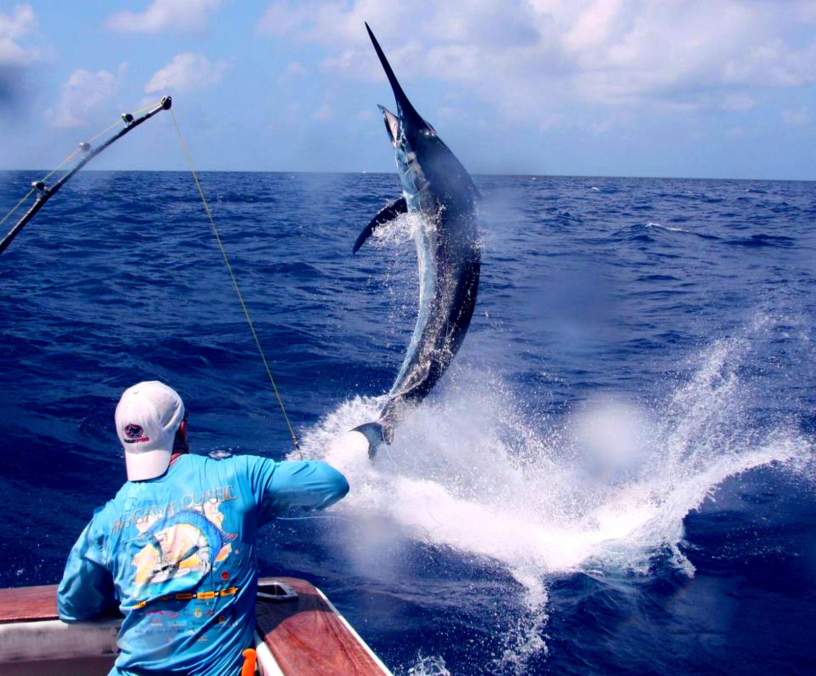 big fishing